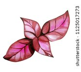 water color leaves  | Shutterstock . vector #1125017273