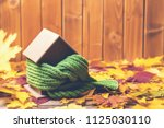 protecting and isolating house. ... | Shutterstock . vector #1125030110