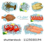 seafood in cartoon style. ... | Shutterstock . vector #1125030194
