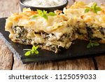 homemade rustic lasagna with... | Shutterstock . vector #1125059033