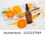 marigold or calendula essential ... | Shutterstock . vector #1125137969