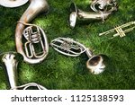 Several ancient musical wind instruments lie on the green grass in the park. Cornet, tenor, baritone, tuba.
