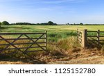 beverley  yorkshire  uk. open... | Shutterstock . vector #1125152780