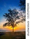 silhouette concept  silhouette...   Shutterstock . vector #1125290240