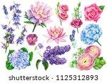 watercolor illustration ...   Shutterstock . vector #1125312893