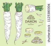 collection of daikon  root and... | Shutterstock .eps vector #1125380306