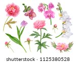 watercolor flower set  pink... | Shutterstock . vector #1125380528