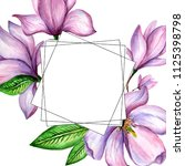 wildflower magnolia flower... | Shutterstock . vector #1125398798
