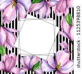 wildflower magnolia flower... | Shutterstock . vector #1125398810