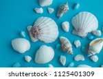 water shell art background   Shutterstock . vector #1125401309
