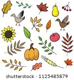 autumn elements illustrations... | Shutterstock .eps vector #1125485879