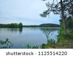 forest lake landscape with pine ...   Shutterstock . vector #1125514220