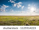 summer landscape with field of...   Shutterstock . vector #1125514223