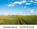 summer landscape with road in...   Shutterstock . vector #1125514226