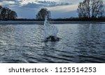 water splash on the lake...   Shutterstock . vector #1125514253