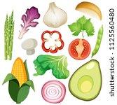 a set of organic vegetable...   Shutterstock .eps vector #1125560480