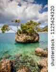 punta rata beach in brela ...   Shutterstock . vector #1125624320