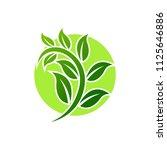 green leaf emblem badge design... | Shutterstock .eps vector #1125646886