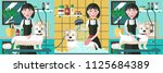 infographics grooming dogs ...   Shutterstock .eps vector #1125684389