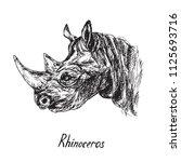 rhino portrait  hand drawn ink...   Shutterstock .eps vector #1125693716