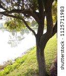 outdoor photos full hd hd hd hd | Shutterstock . vector #1125711983