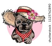 vector portrait of french... | Shutterstock .eps vector #1125762890