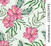 tropical pink hibiscus flowers  ... | Shutterstock .eps vector #1125815993