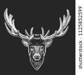 deer wild animal wearing hockey ... | Shutterstock .eps vector #1125852599