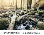 low angle view of creek in... | Shutterstock . vector #1125899618