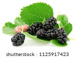 ripe mulberries fruit and green ... | Shutterstock . vector #1125917423