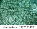 beautiful seabed background ... | Shutterstock . vector #1125921470
