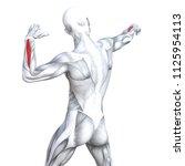 concept conceptual 3d... | Shutterstock . vector #1125954113