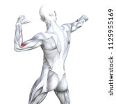 concept conceptual 3d... | Shutterstock . vector #1125955169