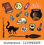 vintage halloween elements... | Shutterstock .eps vector #1125983309