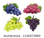realistic grapes. vector set of ... | Shutterstock .eps vector #1126072883