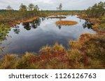 lahemaa national park in... | Shutterstock . vector #1126126763