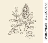 licorice  licorice plant ... | Shutterstock .eps vector #1126273970
