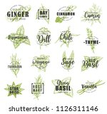 spice and herb leaf sketch... | Shutterstock .eps vector #1126311146