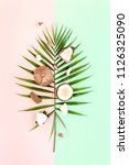 tropical green palm leaf and... | Shutterstock . vector #1126325090