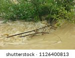 flood of the mountain river...   Shutterstock . vector #1126400813