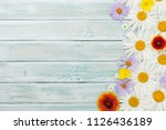 garden flowers on wooden... | Shutterstock . vector #1126436189
