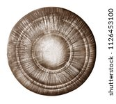 ancient metal shield isolated...   Shutterstock . vector #1126453100