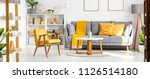 real photo of a couch with...   Shutterstock . vector #1126514180