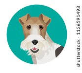 fox terrier in color circle... | Shutterstock .eps vector #1126591493