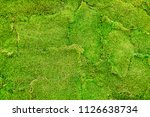stable background of green moss.... | Shutterstock . vector #1126638734