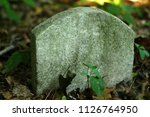 small child's gravestone being... | Shutterstock . vector #1126764950
