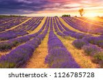 beautiful sunset lavender field ... | Shutterstock . vector #1126785728
