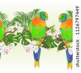 tropical border seamless... | Shutterstock .eps vector #1126797449