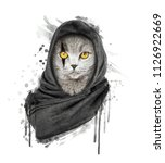 watercolor cat illustration.... | Shutterstock . vector #1126922669