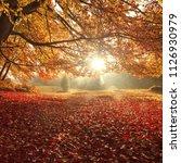 amazing sunset landscape ... | Shutterstock . vector #1126930979
